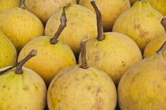 Santol Frucht die wilde Mangostanfrucht stockfoto