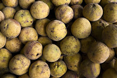 Santol Fruit Stock Photos