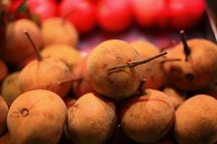Santol fruit. The santol is believed native to former Indochina and Peninsular Malaysia, and to have been introduced into Sri Lanka, India, Borneo, Indonesia royalty free stock images