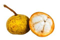 Santol fruit. Isolated on white background Royalty Free Stock Photo