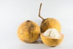 Santol frukt Royaltyfri Bild