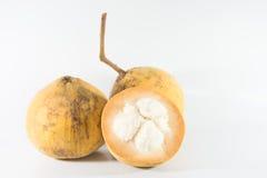 Santol frukt Arkivfoto