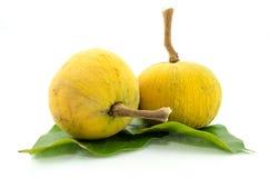 Santol, fruta tropical fotografía de archivo