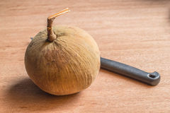 Santol and Knife Royalty Free Stock Photos