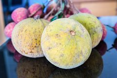 Santol-meliaceae fruit Stock Image