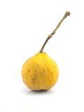 Santol-Meliaceaefrucht lokalisiert Stockbilder