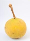 Santol oder Meliaceaefrucht auf weißem Hintergrund Es gibt süßen Geschmack und sauren Geschmack Lizenzfreies Stockfoto