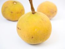 Santol oder Meliaceaefrucht lokalisiert auf weißem Hintergrund Stockfotos