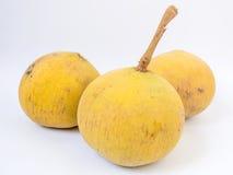Santol oder Meliaceaefrucht lokalisiert auf weißem Hintergrund Es gibt süßen Geschmack und sauren Geschmack Lizenzfreies Stockfoto