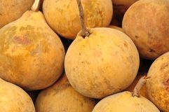 Santol, Thai tropical fruit Stock Photo