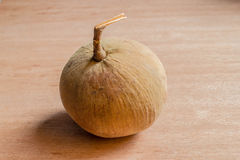 Santol. Is a tropical fruit Originated in Southeast Asia Royalty Free Stock Photos