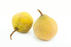 Santol tropical fruit on white Royalty Free Stock Images