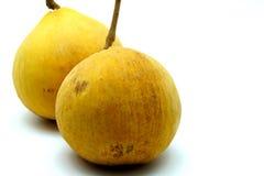 Santol; Tropikalna Egzotyczna owoc Tajlandia na Białym tle Zdjęcie Stock