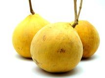 Santol; Tropikalna Egzotyczna owoc Tajlandia na Białym tle Obrazy Stock