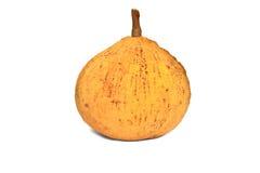 Santol, tropische Frucht lizenzfreie stockbilder