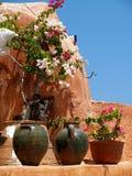 Santorini blommor i urnor arkivfoto