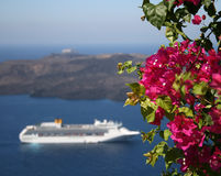 Santorini bougainvillea Stock Photography
