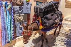 Santorini donkey II. Donkey with the load at village Oia stock photography
