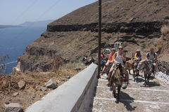 Santorini donkey path Stock Photography