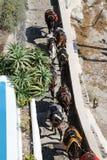Santorini Donkey Ride Royalty Free Stock Photo