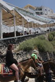Santorini donkey ride Stock Photos