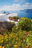 Santorini - el teracce adornado floral en la isla de Oia y de Therasia Fotos de archivo libres de regalías
