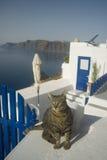 Santorini,Greece. Stock Photos