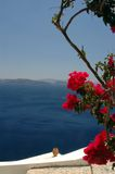 Santorini incredibile Fotografie Stock