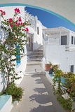 Santorini - look to typically aisle with he flowers in Imerovigli. Stock Photos