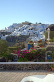 Gardens on Santorini roofs,Greece Royalty Free Stock Photos