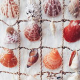 Santorini shells decoration. Thira, fira town Santorini greek greece Island Stock Photo