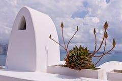 Santorini Succulent Flowers Seaa and Sky. Santorini Succulent Flowers Aegean Sea, sky and clouds Stock Photos