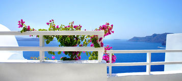 Santorini terrace with flowers Royalty Free Stock Photos