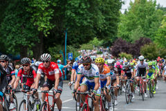 Santos Tour Down Under Lizenzfreie Stockfotografie