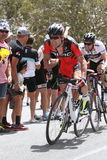 Santos Tour Down Under 2015 Royalty Free Stock Images