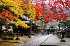 Santuário xintoísmo e folhas de bordo Fotografia de Stock Royalty Free