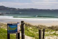 Santuario Auckland Nuova Zelanda del continente di Tawharanui immagini stock