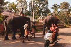 Santuario del elefante de Kodanad - elefante que camina al baño con los encargados visibles imagen de archivo