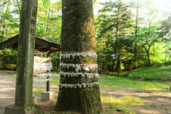 Santuario del giapponese Fotografia Stock