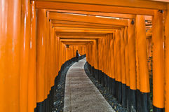 Santuario di Fushimi Fotografie Stock Libere da Diritti