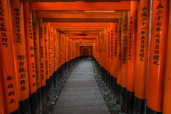 Santuario di Fushimi Inari-taisha Immagine Stock Libera da Diritti