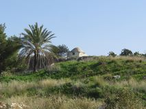 Santuario di Sheikh Baraz Ed Din, Israele fotografia stock