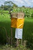 Santuario indù del giacimento del riso, Bali, Indonesia Fotografia Stock