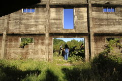 Santuario Naturaleza, Valdivia Zuid-Amerika Royalty-vrije Stock Afbeeldingen