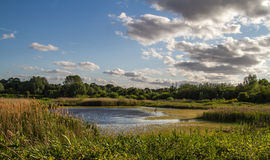 Sandwell Valley Park Stock Photo