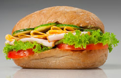 Sanwich with chiken and cheese Stock Photos