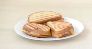 Sanwich white plate Stock Photos