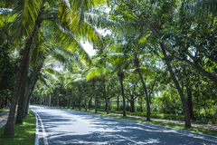 Sanya Yalong Bay Road Stock Image