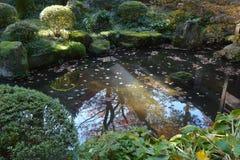 Sanzen-in. Japan Temple Sanzen-in in autumn Stock Photography