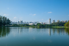 sao Бразилии paulo Стоковые Фотографии RF